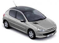 Peugeot206_Panoramic_Roof_thumb